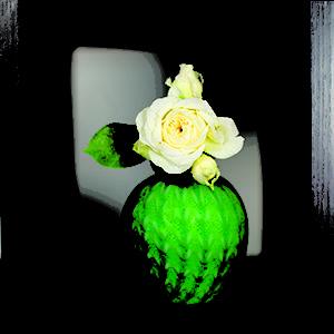 California Closets Floral Display Puerto Rico