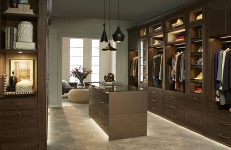 Dark Brown Walk in Closet with Accent Lighting and Brass Hardware